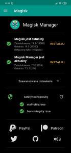Screenshot_2019-07-16-13-03-49-554_com.topjohnwu.magisk.jpg