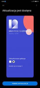 Screenshot_2020-06-22-16-46-08-826_com.android.updater.jpg