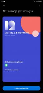 Screenshot_2021-01-22-06-11-53-735_com.android.updater.jpg